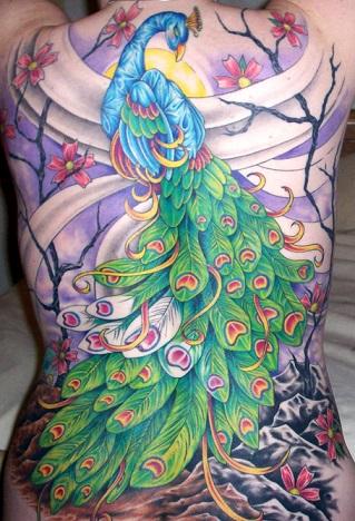 peacock-feather-tattoo-whole-b