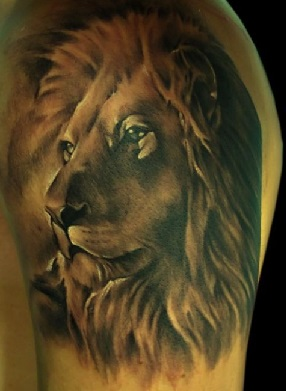 shoulder-tattoos-men-lion-portrait