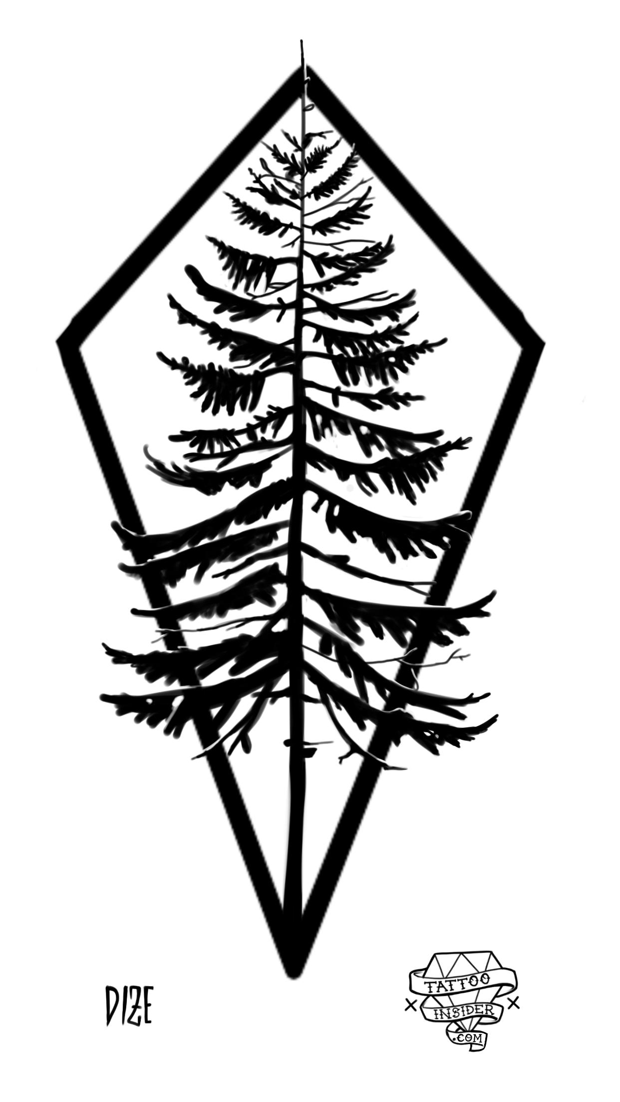Pine Tree Tattoo Design Tattoo Insider