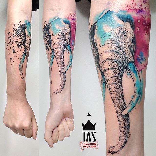 Elephant Tattoo by Rodrigo Tas